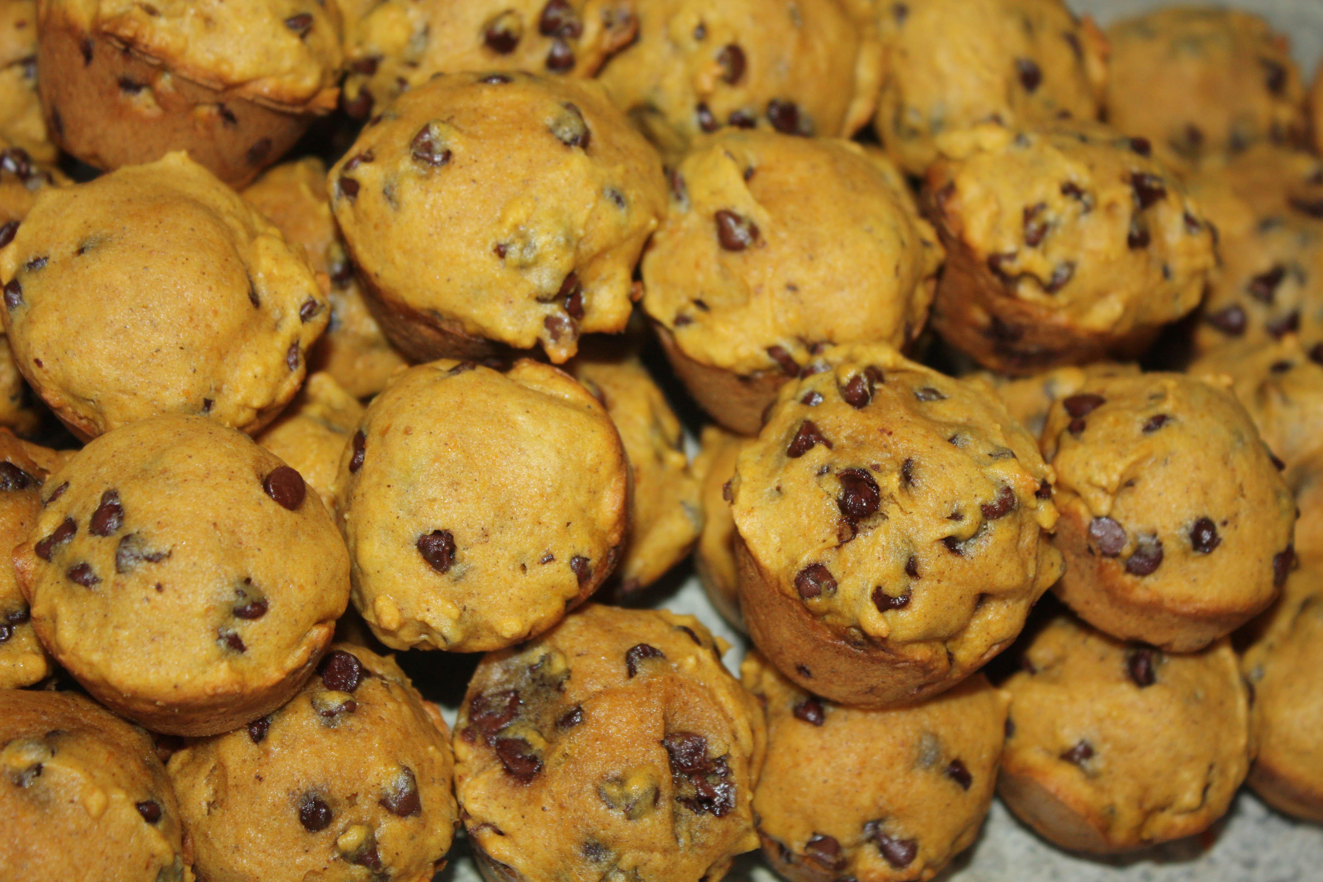 Mini Pumpkin Chocolate Chip Muffins | lawstudentscookbook