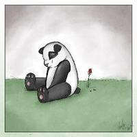 sad_panda20110725-22047-1cufy1d